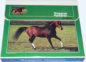 Nostalgia: Trapper Keepers