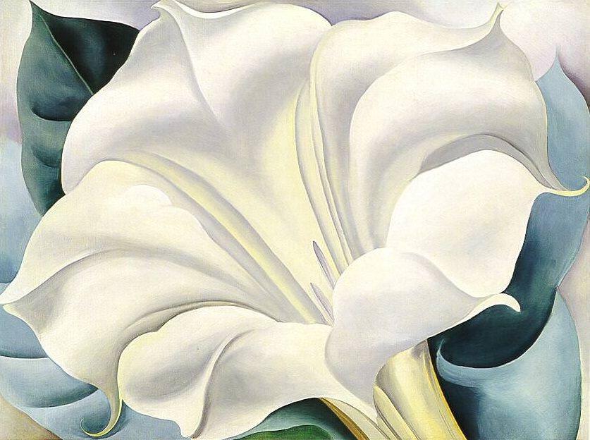 the-white-flower