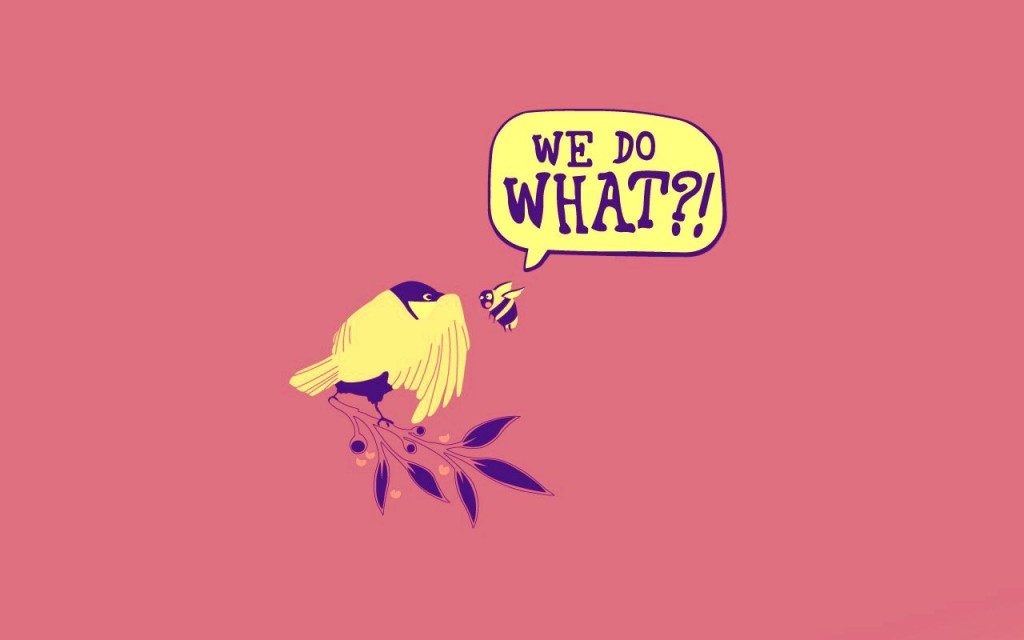 the-bees-birds-funny-152091-1280x800 1