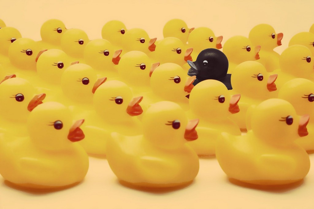 othering concept - one black rubber duck among many yellow rubber ducks