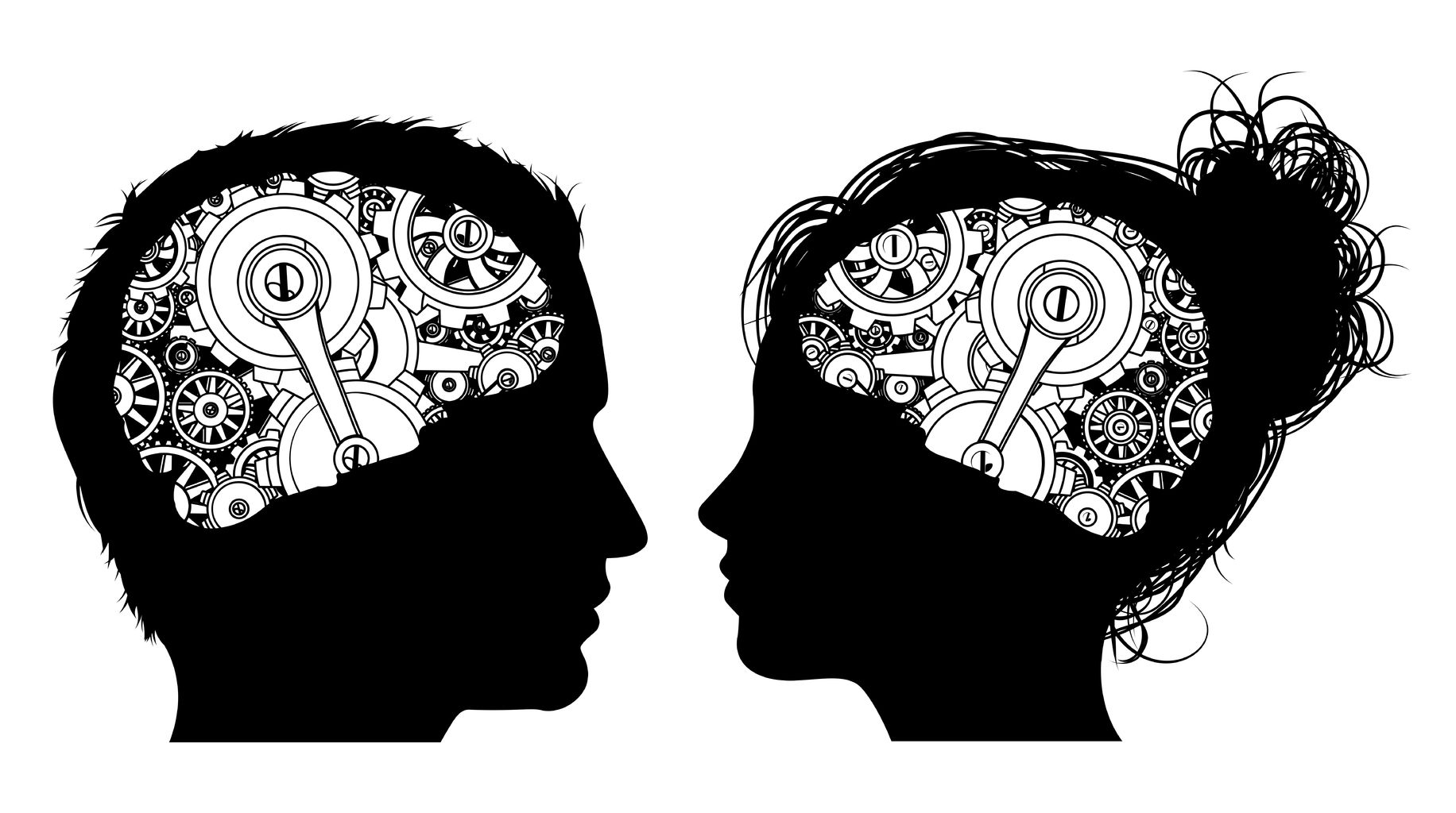 Brain Connectivity Study Reveals Striking Differences ...